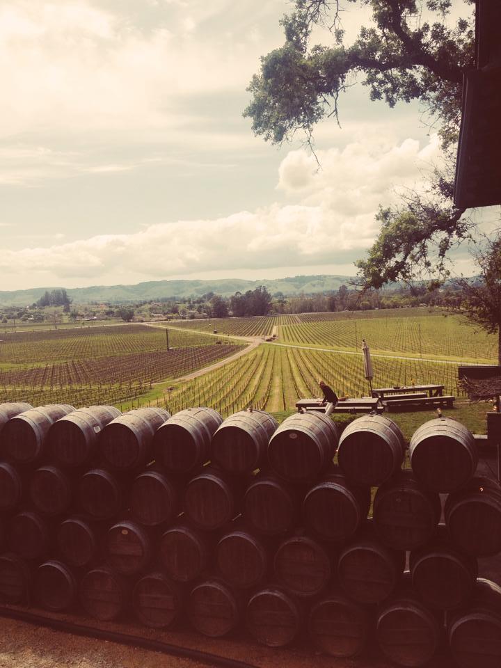 Scribe Winery, California