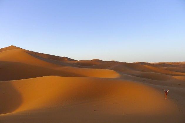 Dunes in the Sahara