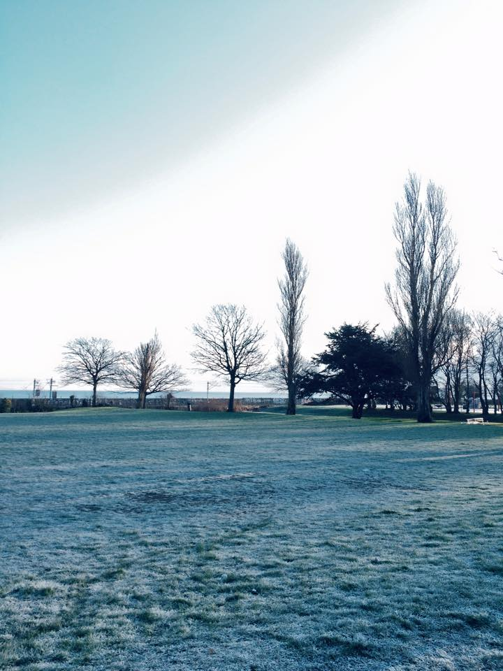 Frozen Morning Earth