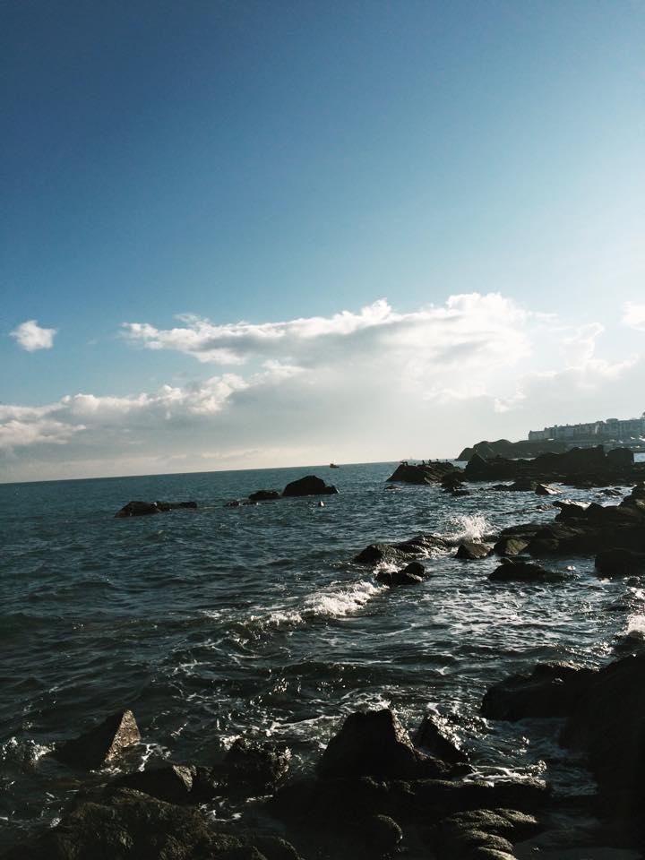 Sandycove coastline