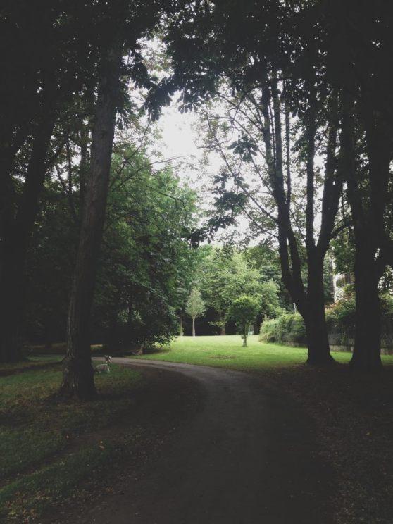 Our first Dublin Home-Herbert Park.